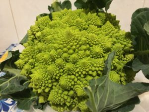 broccoli_romaneschi2